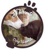 dog_island_tarcento_logo_02